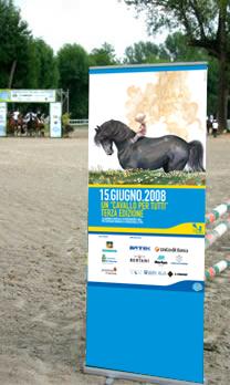PUBLIKATIONEN 2008